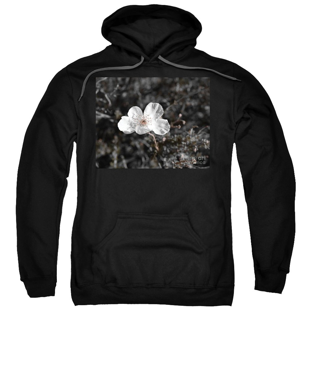 Black And White Photography Sweatshirt featuring the photograph Solitary Survivor by Janet Marie