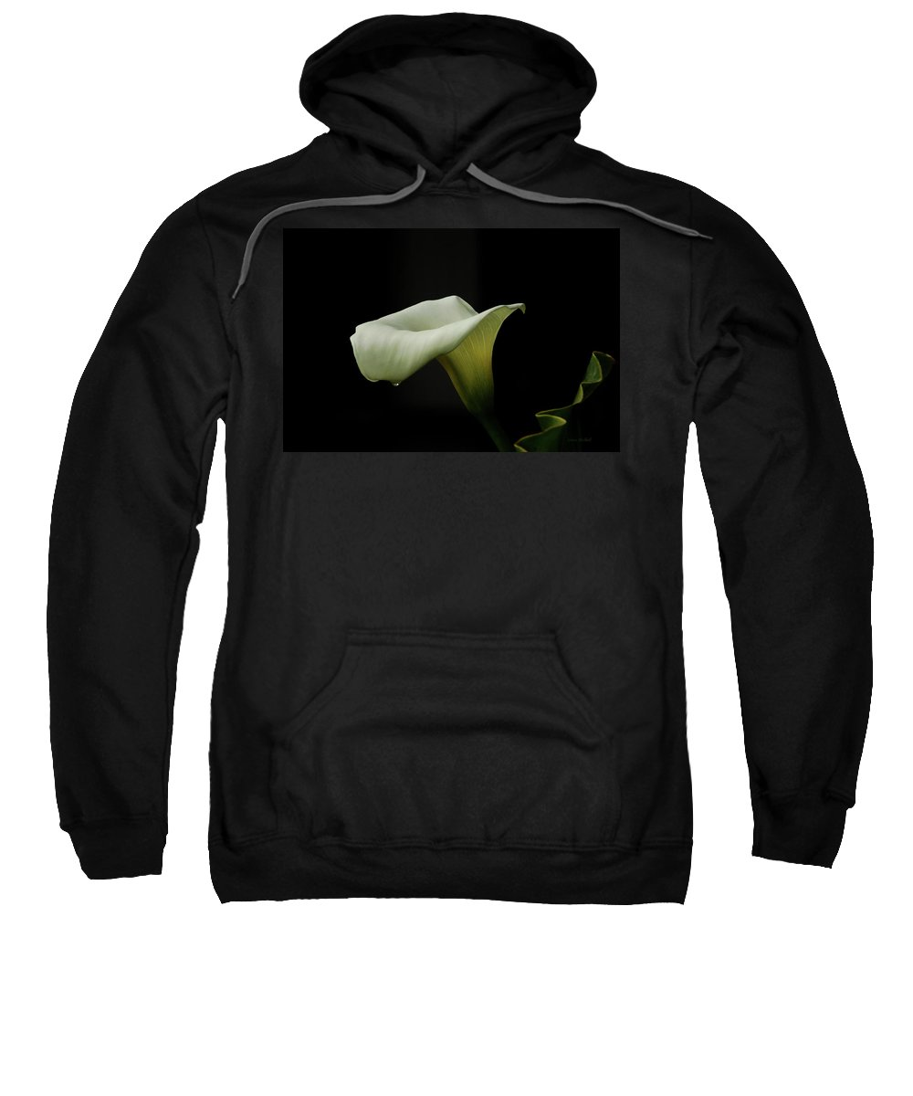 Calla Lily Sweatshirt featuring the photograph Something About Lily by Donna Blackhall