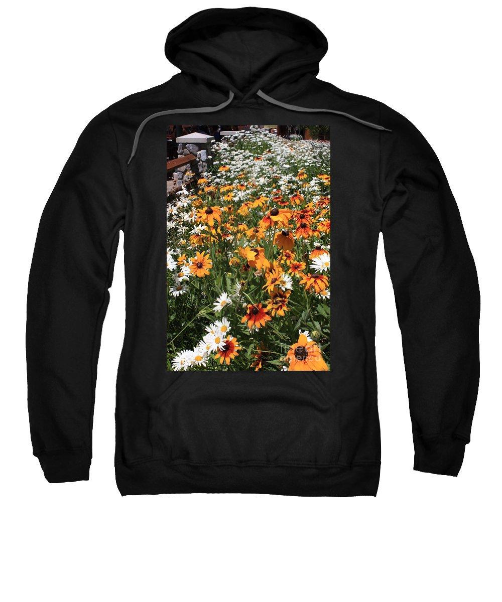 Flowers Sweatshirt featuring the photograph South Lake Tahoe Flowers by Carol Groenen
