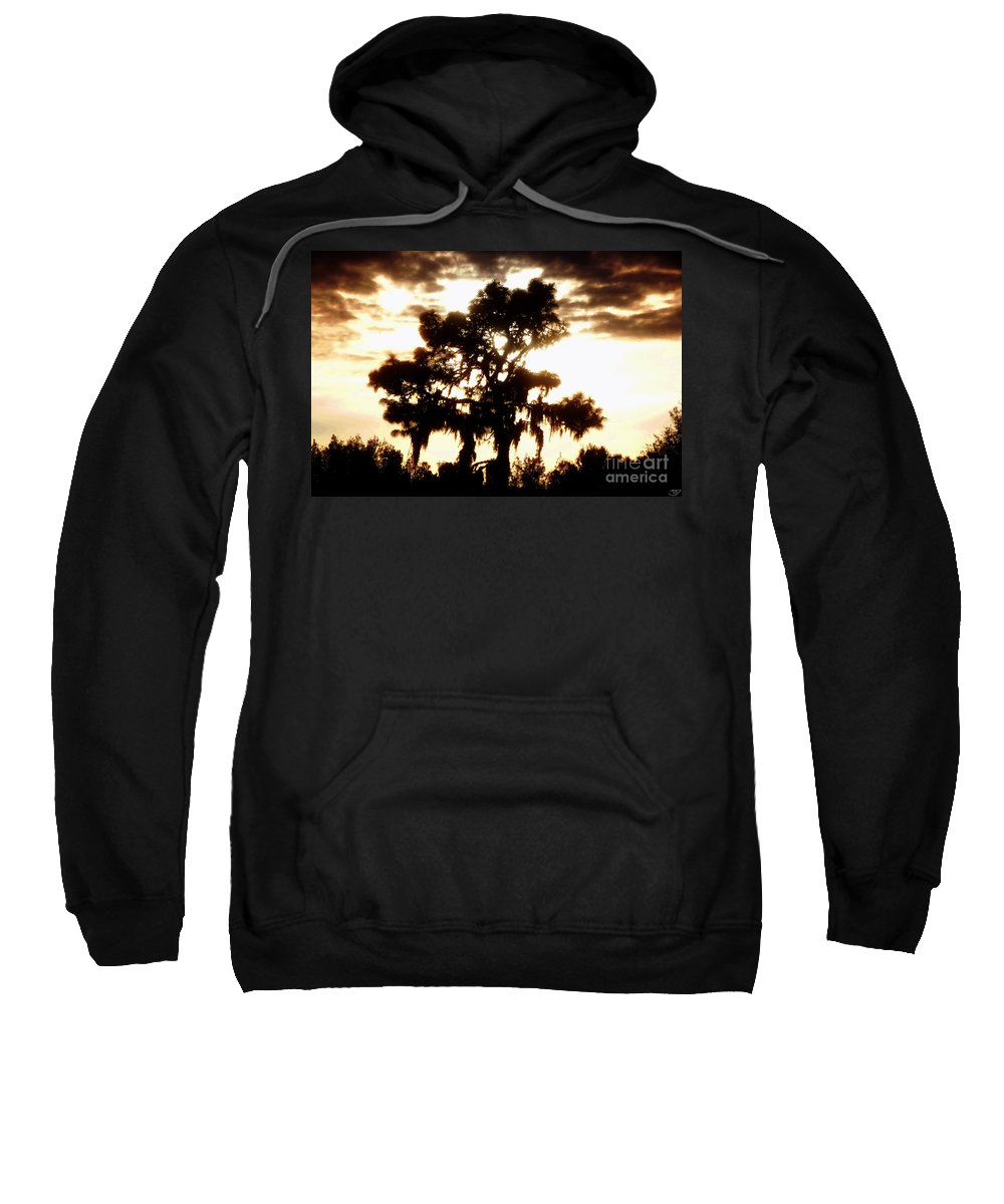 Pine Tree Sweatshirt featuring the painting Southern Pine by David Lee Thompson