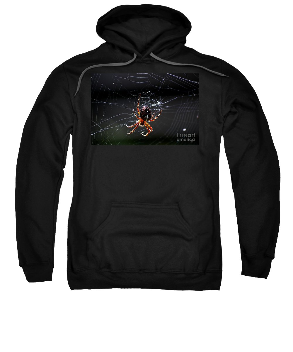 Digital Photo Sweatshirt featuring the photograph Spider by David Lane