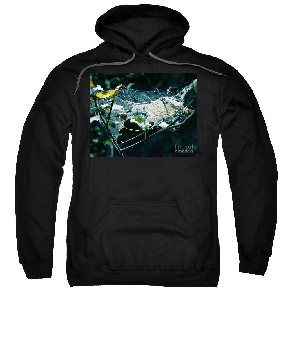 Spider Sweatshirt featuring the photograph Spider Web by Peter Piatt