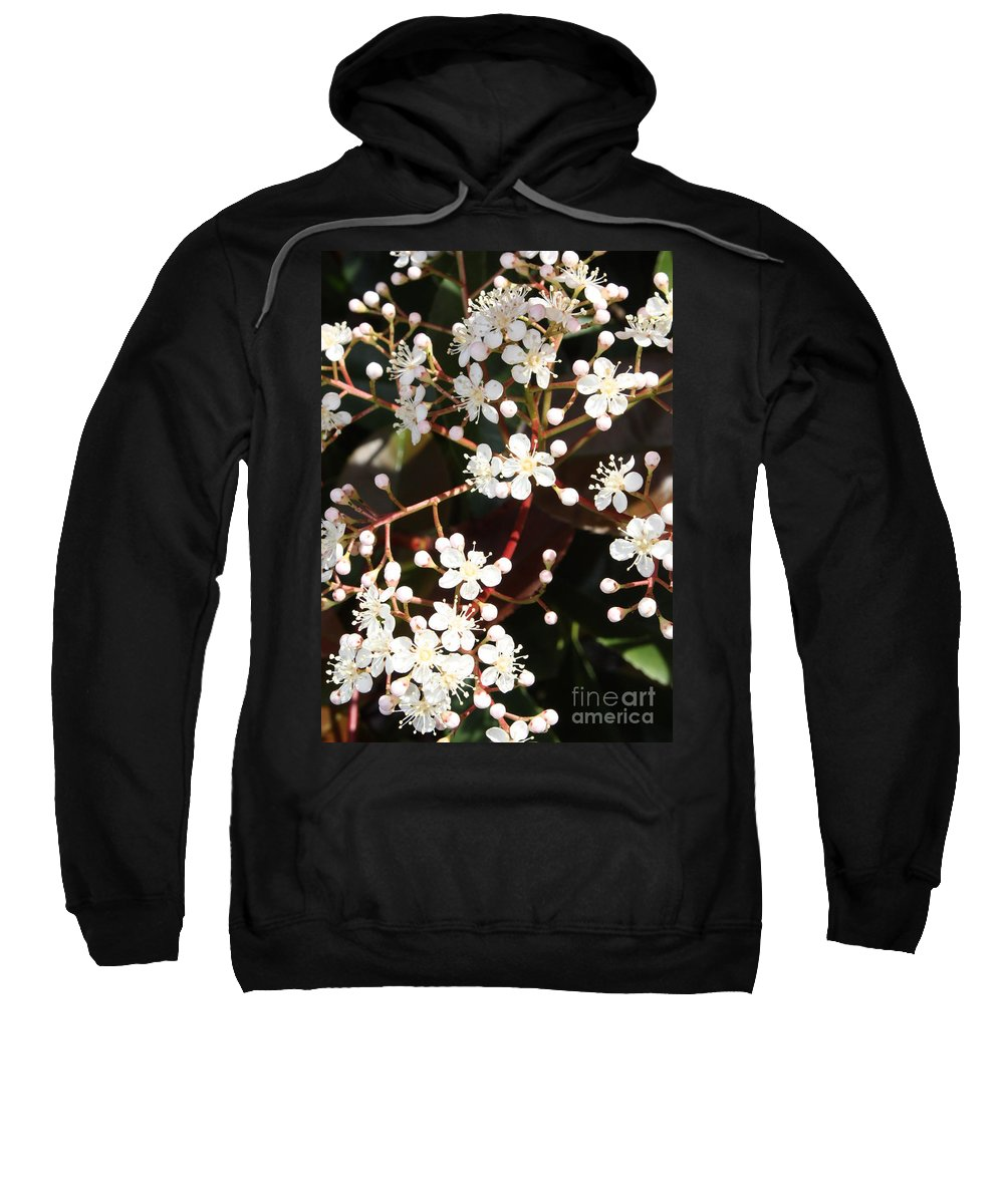 Spring Sweatshirt featuring the photograph Spring Blossoms Macro by Carol Groenen