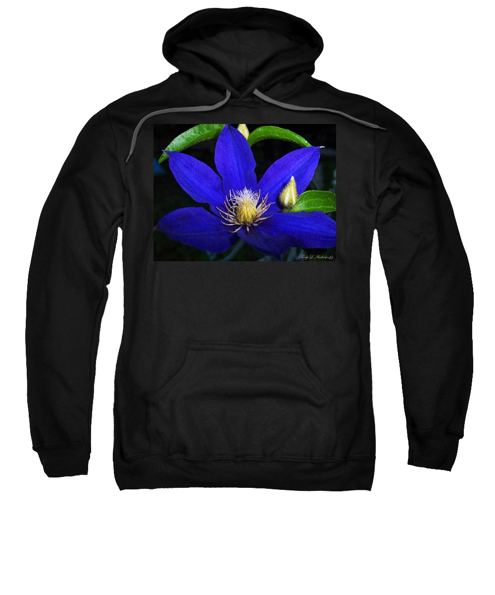 Spring Sweatshirt featuring the photograph Spring Clematis by Terry Anderson