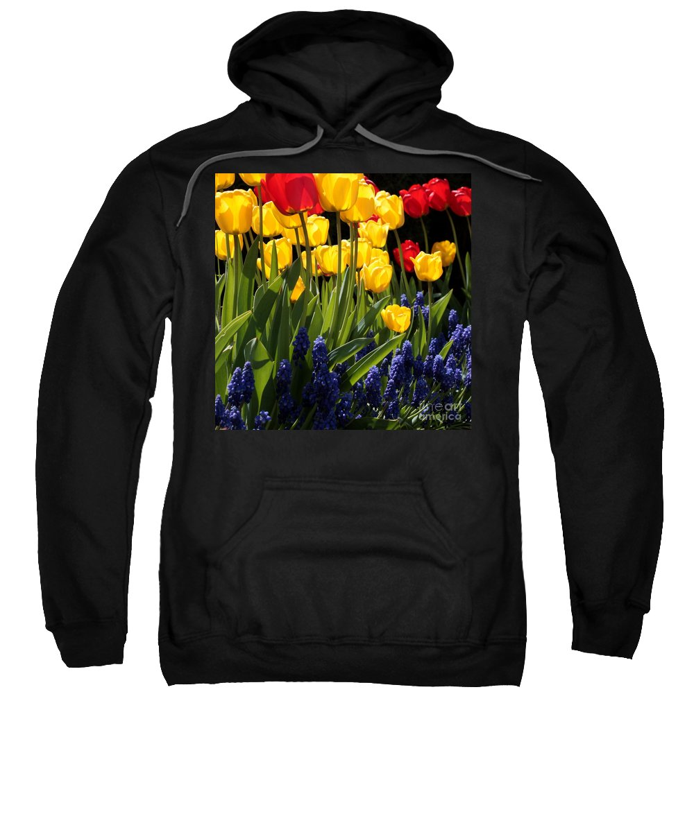 Spring Sweatshirt featuring the photograph Spring Flowers Square by Carol Groenen