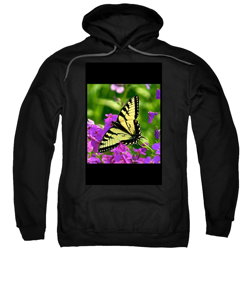 Butterfly Sweatshirt featuring the photograph Spring Glory by Robert Pearson