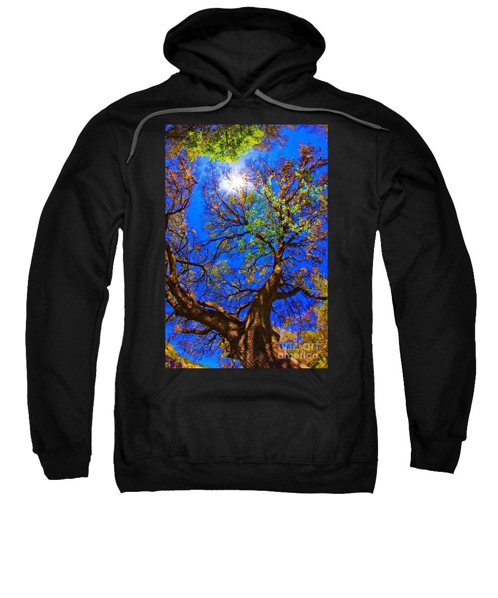 Michael Tidwell Photography Sweatshirt featuring the photograph Spring Oak by Michael Tidwell