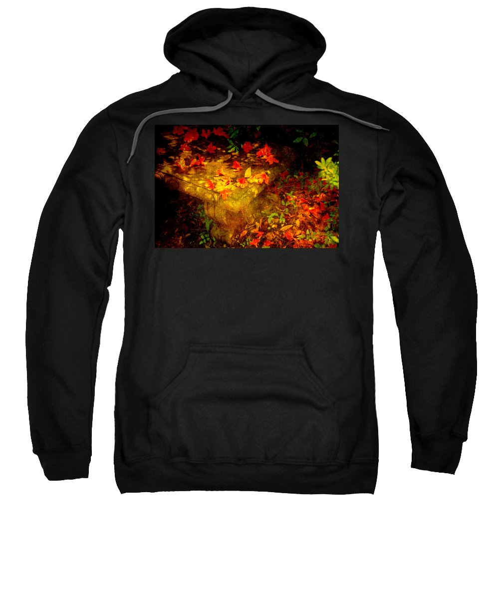 Flower Sweatshirt featuring the photograph Spring Or Autumn by Susanne Van Hulst