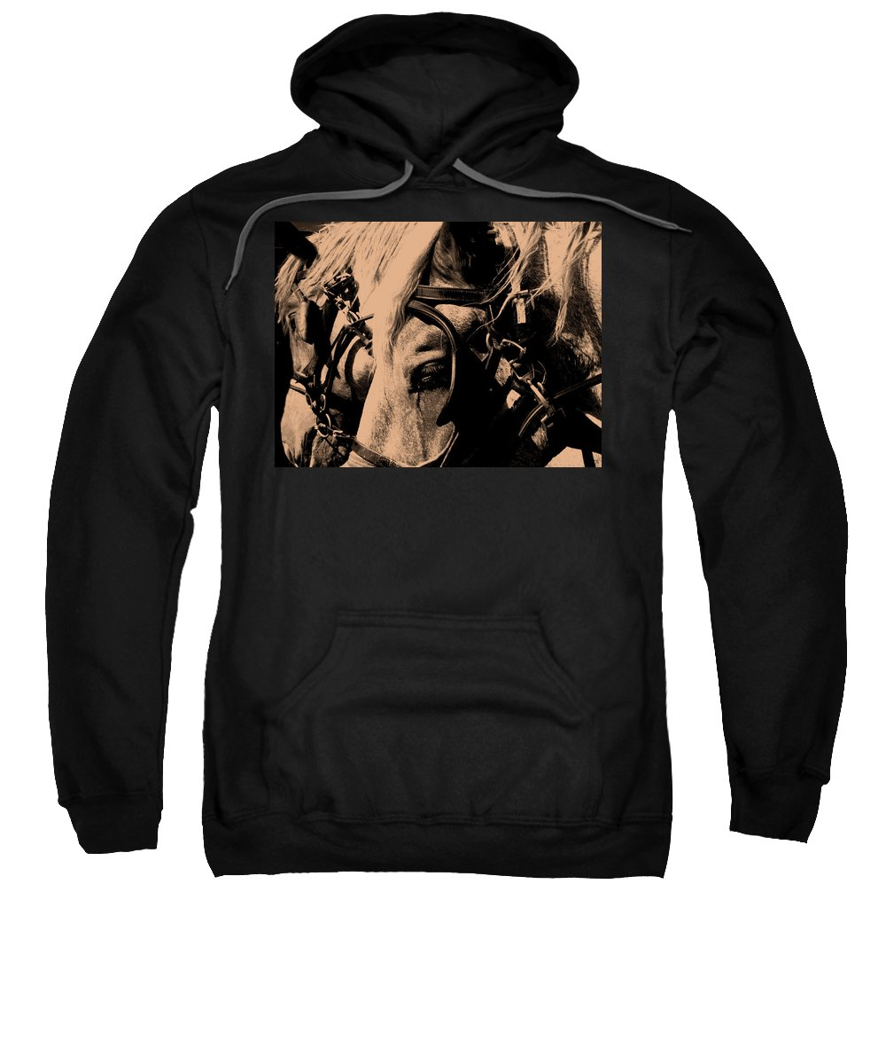 Horse Sweatshirt featuring the photograph Stage Coach Horses by Wayne Potrafka