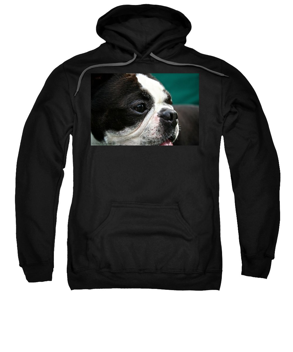 Animal Sweatshirt featuring the photograph Stanley's Head Study by Susan Herber