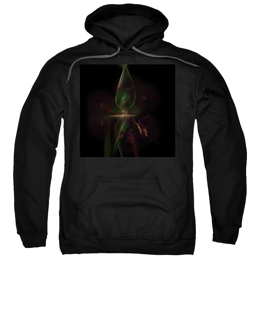Abstract Digital Painting Sweatshirt featuring the digital art Still Life 11-14-09 by David Lane