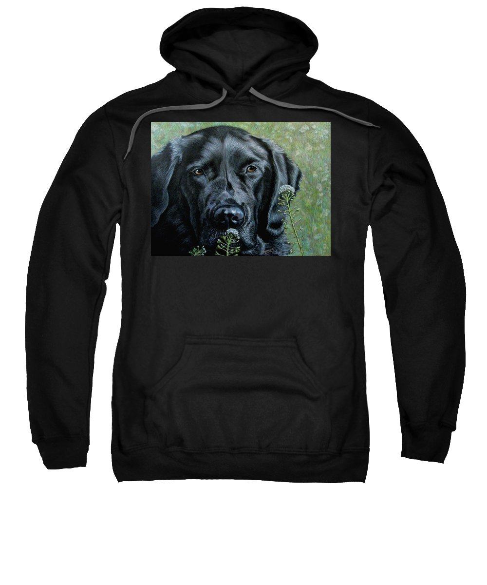 Black Lab Sweatshirt featuring the drawing Stop And Smell The Flowers by Beverly Fuqua