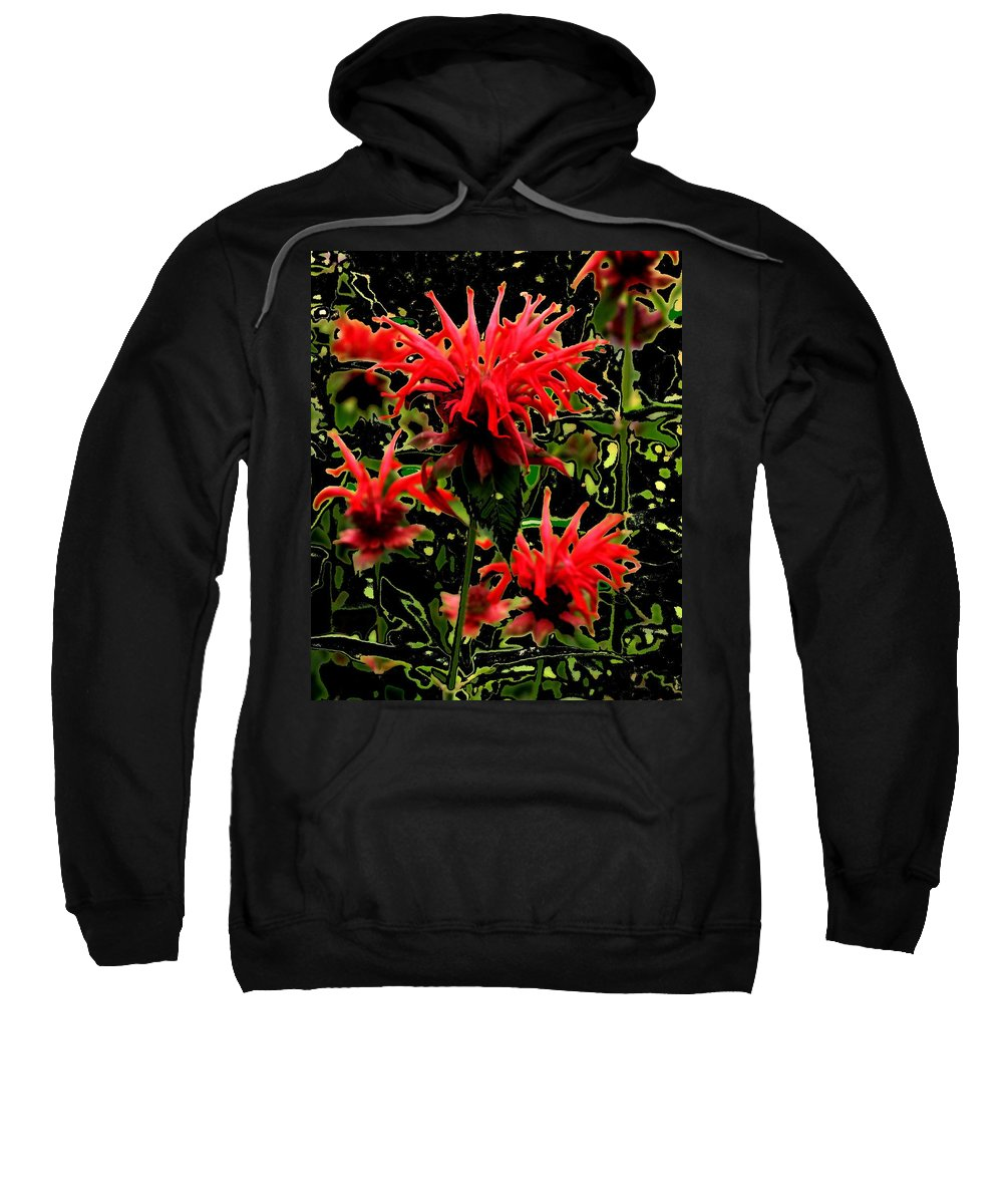 Abstract Sweatshirt featuring the photograph Strange Garden by Ian MacDonald