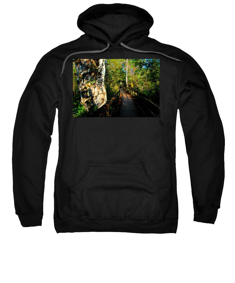 Strangler Fig Sweatshirt featuring the painting Strangler Fig by David Lee Thompson