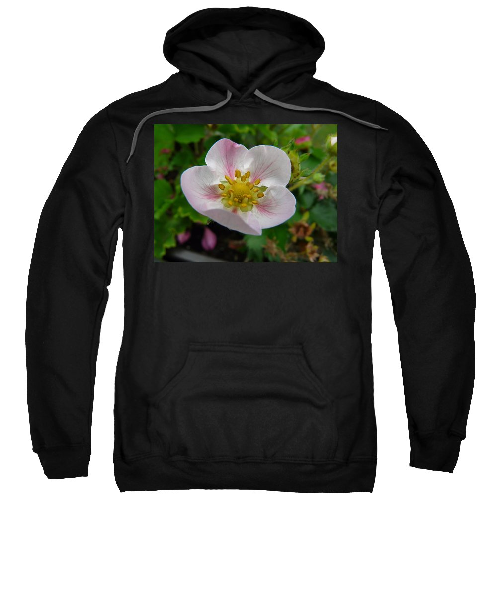 Plant Sweatshirt featuring the photograph Strawberry Blossom by Valerie Ornstein