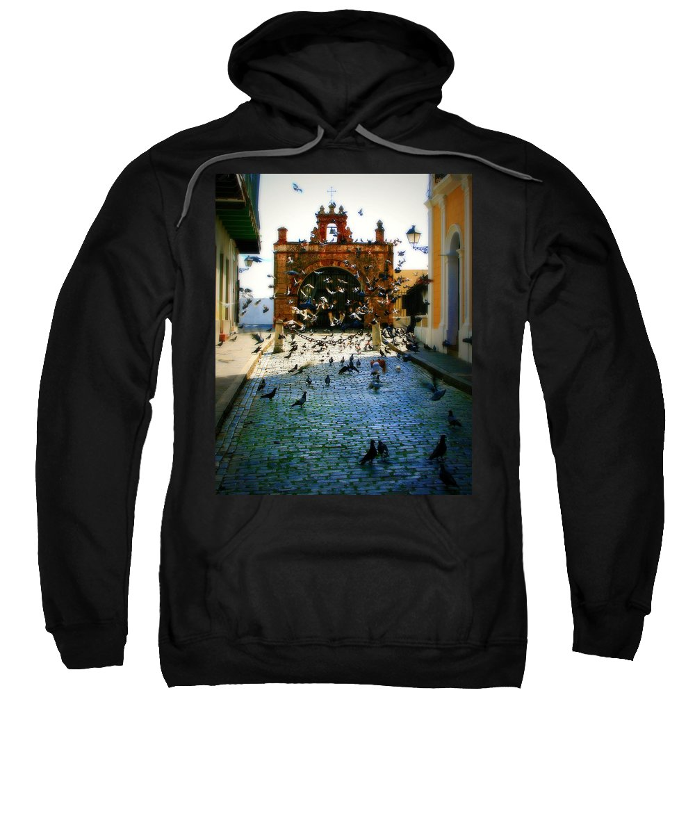 Pigeon Sweatshirt featuring the photograph Street Pigeons by Perry Webster