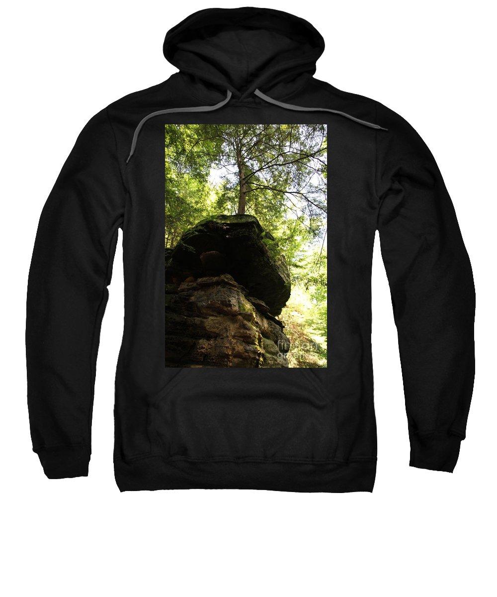 Tree Sweatshirt featuring the photograph Strength by Amanda Barcon