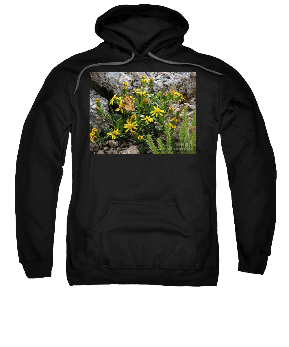 Black Sweatshirt featuring the photograph Stretch Your Wings by Grant Bolei