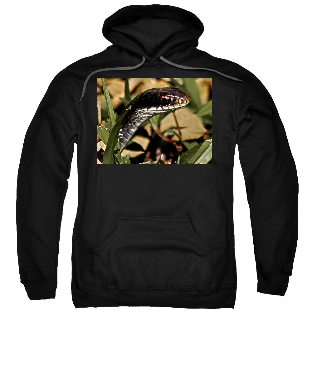 Snake Sweatshirt featuring the photograph Striking A Pose by DigiArt Diaries by Vicky B Fuller