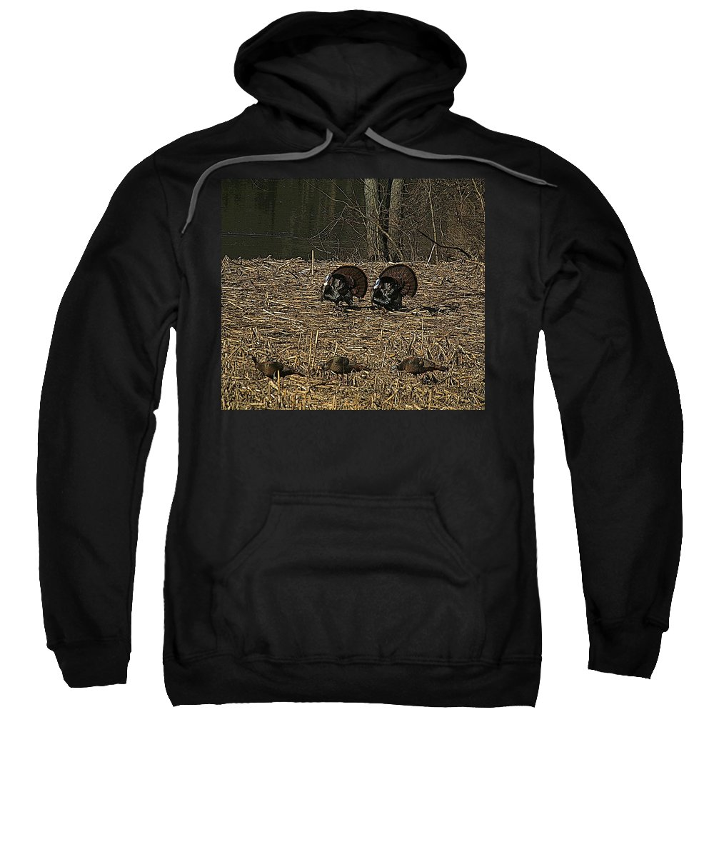 Turkey Sweatshirt featuring the photograph Strutin For The Ladies by Robert Pearson