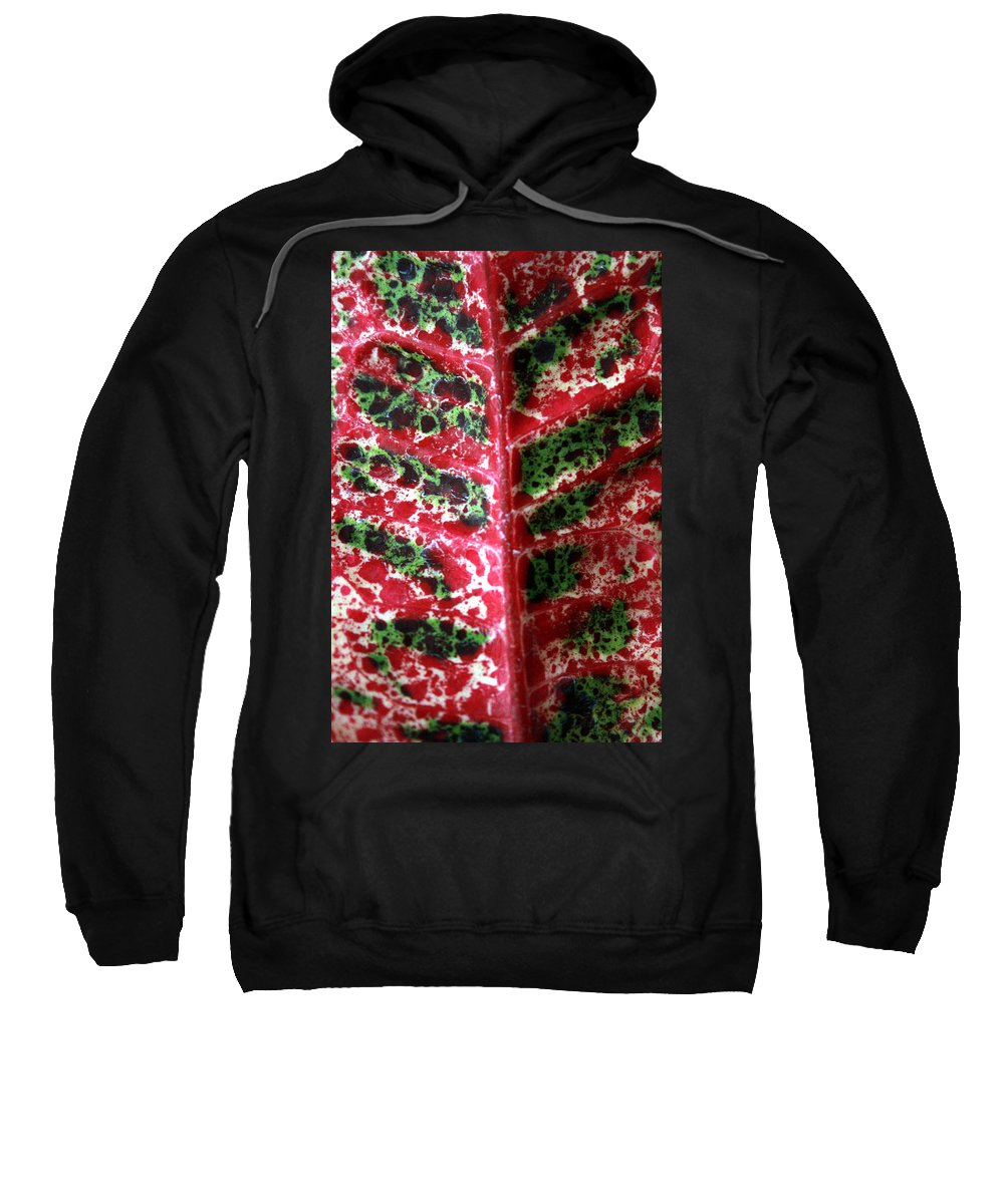 Tropical Leaves Sweatshirt featuring the photograph Study Of The Croton 3 by Jennifer Bright