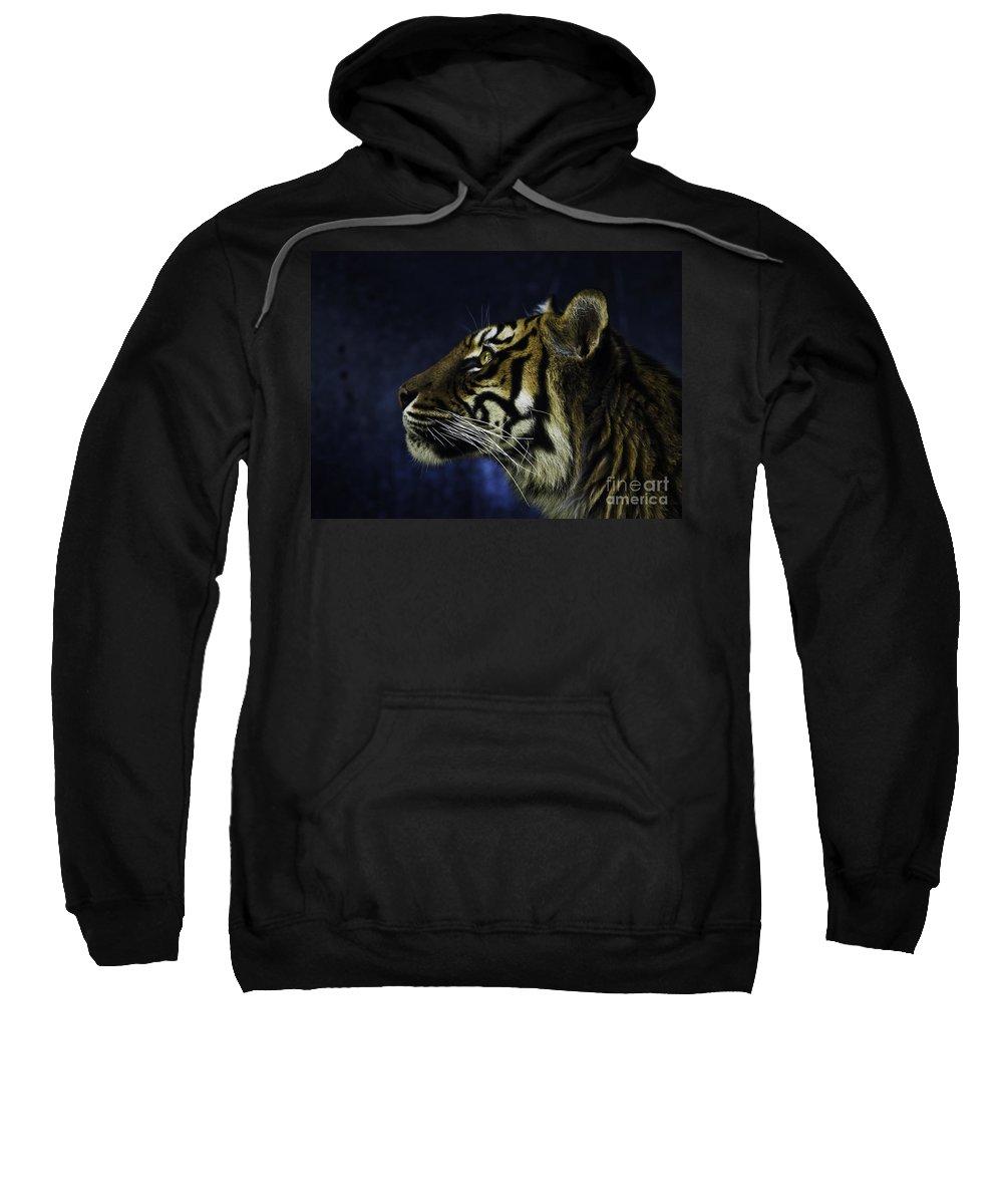 Sumatran Tiger Sweatshirt featuring the photograph Sumatran tiger profile by Sheila Smart Fine Art Photography