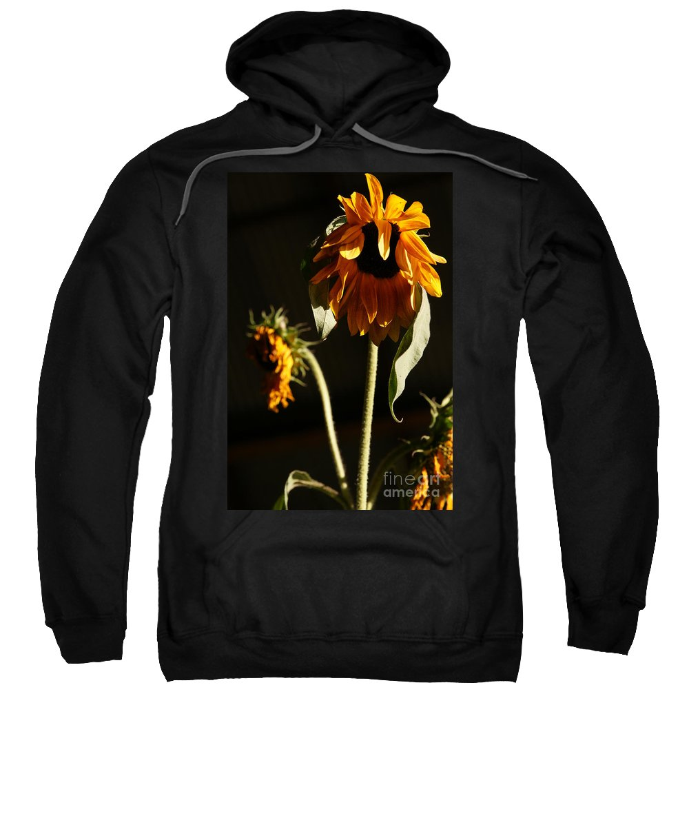 Summer Sweatshirt featuring the photograph Summer And The Beat Of Your Heart by Linda Shafer
