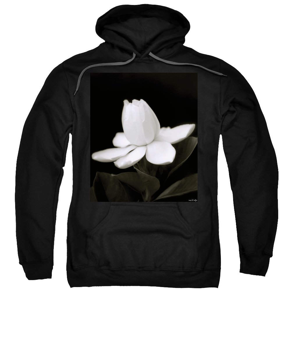 Flower Sweatshirt featuring the photograph Summer Fragrance by Holly Kempe