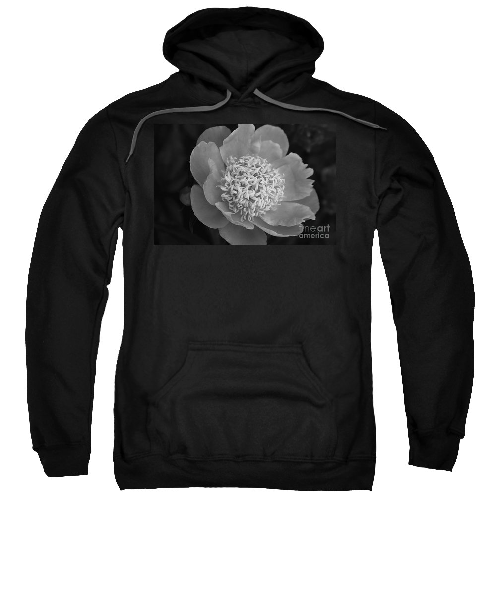 Peony Sweatshirt featuring the photograph Summer Peony by Kathy McClure