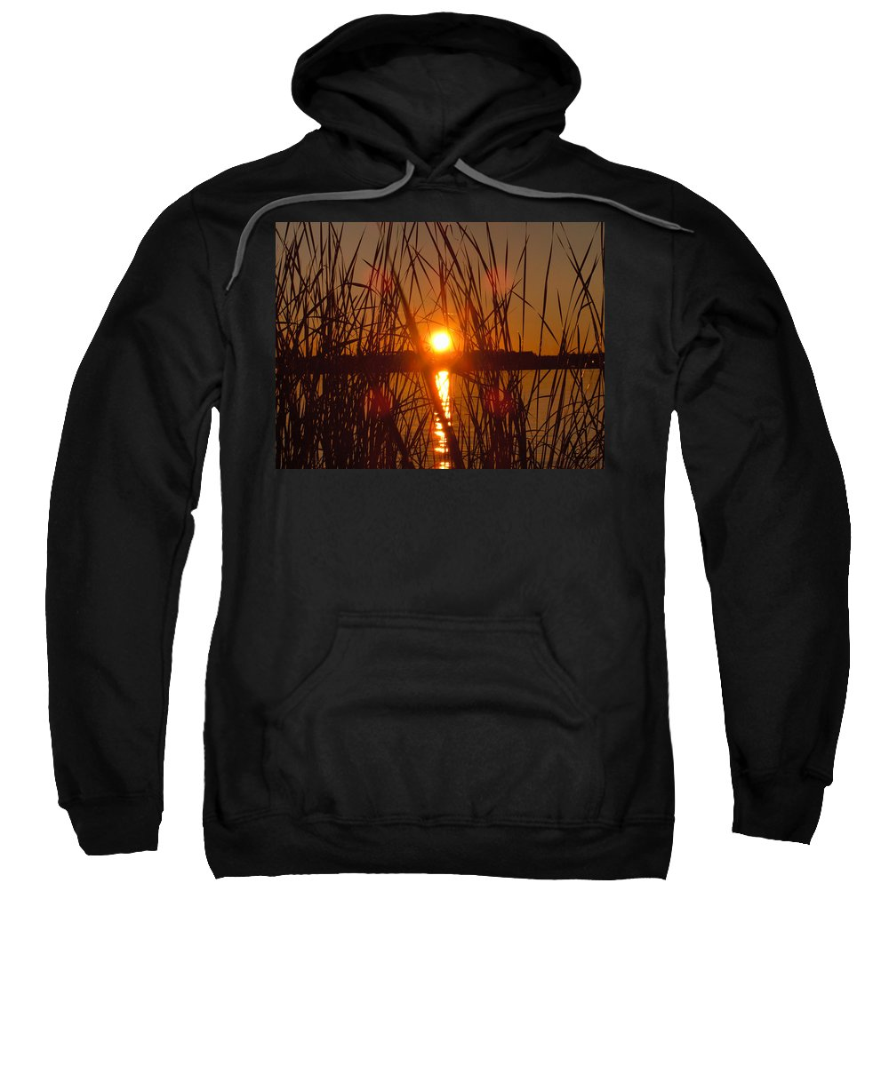 Reeds Lake Water Sunset Sunshine Nature Sweatshirt featuring the photograph Sun In Reeds by Andrea Lawrence