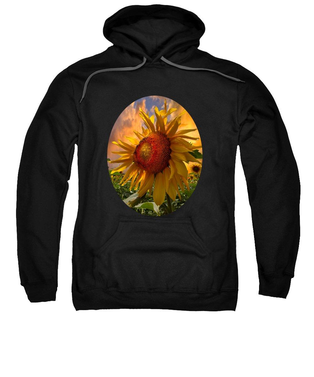 Sunflower Sweatshirt featuring the photograph Sunflower Dawn In Oval by Debra and Dave Vanderlaan