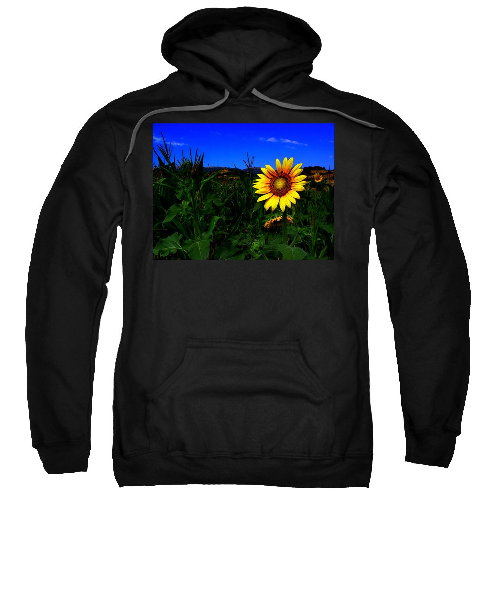 Flower Sweatshirt featuring the photograph Sunflower by Silvia Ganora