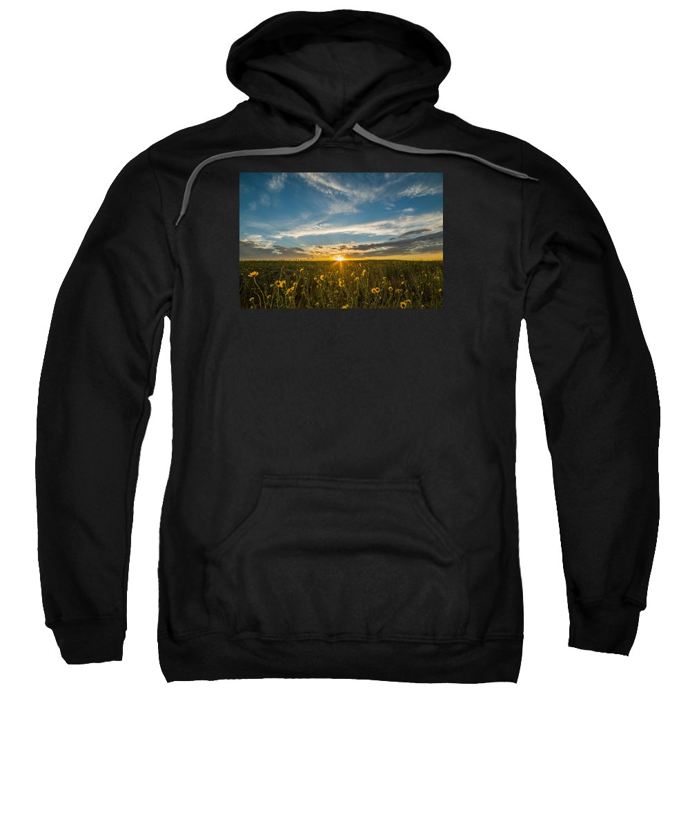 Sunflowers Sweatshirt featuring the photograph Sunflowers by Jessica Moore