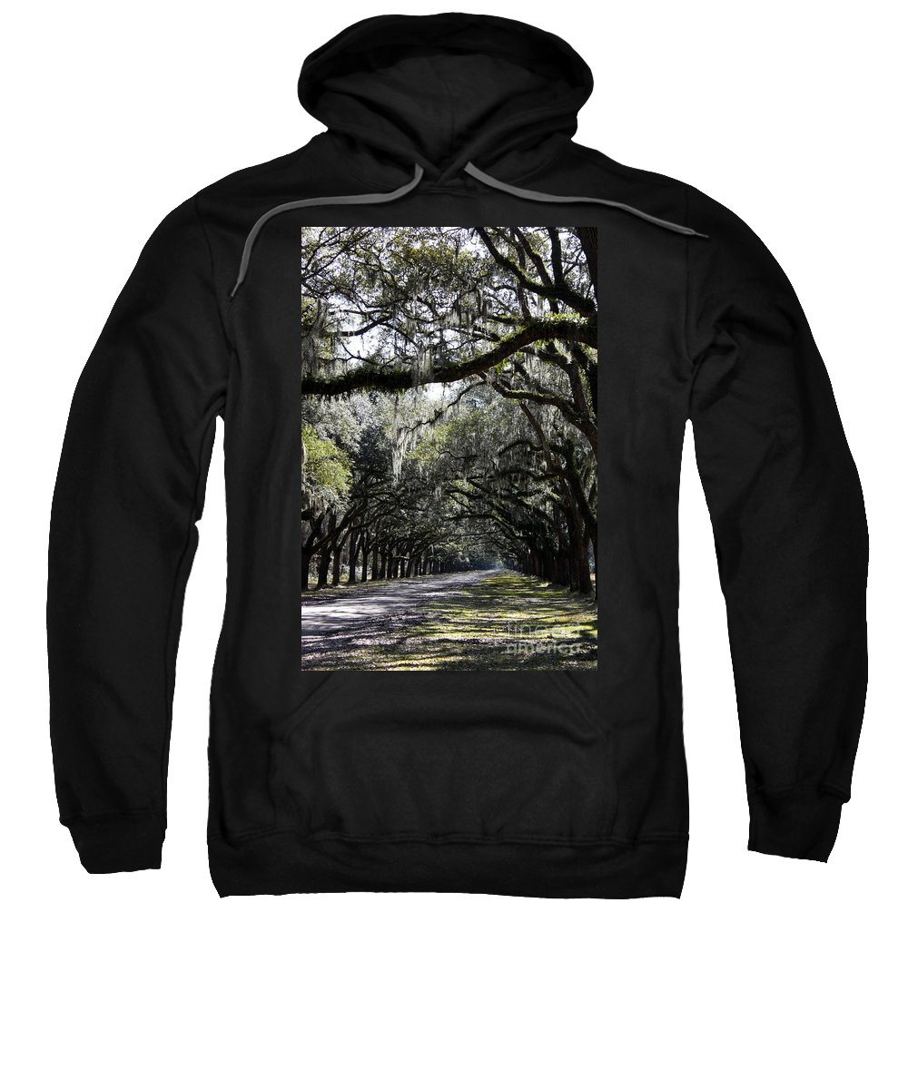 Live Oaks Sweatshirt featuring the photograph Sunlight And Shadows On Live Oaks by Carol Groenen
