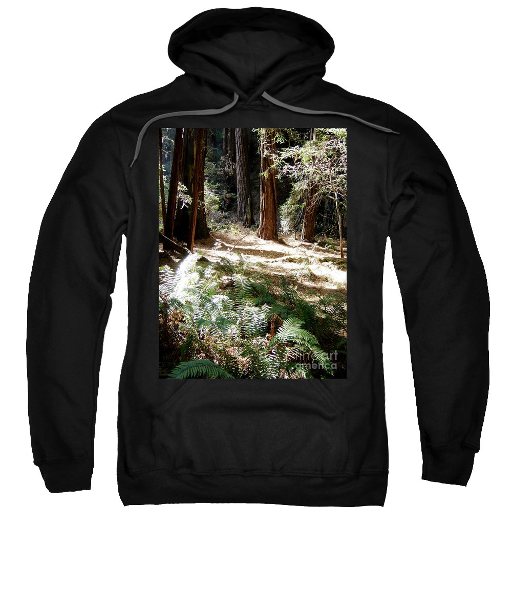 Sunlight Sweatshirt featuring the photograph Sunlight On Path by Mary Rogers