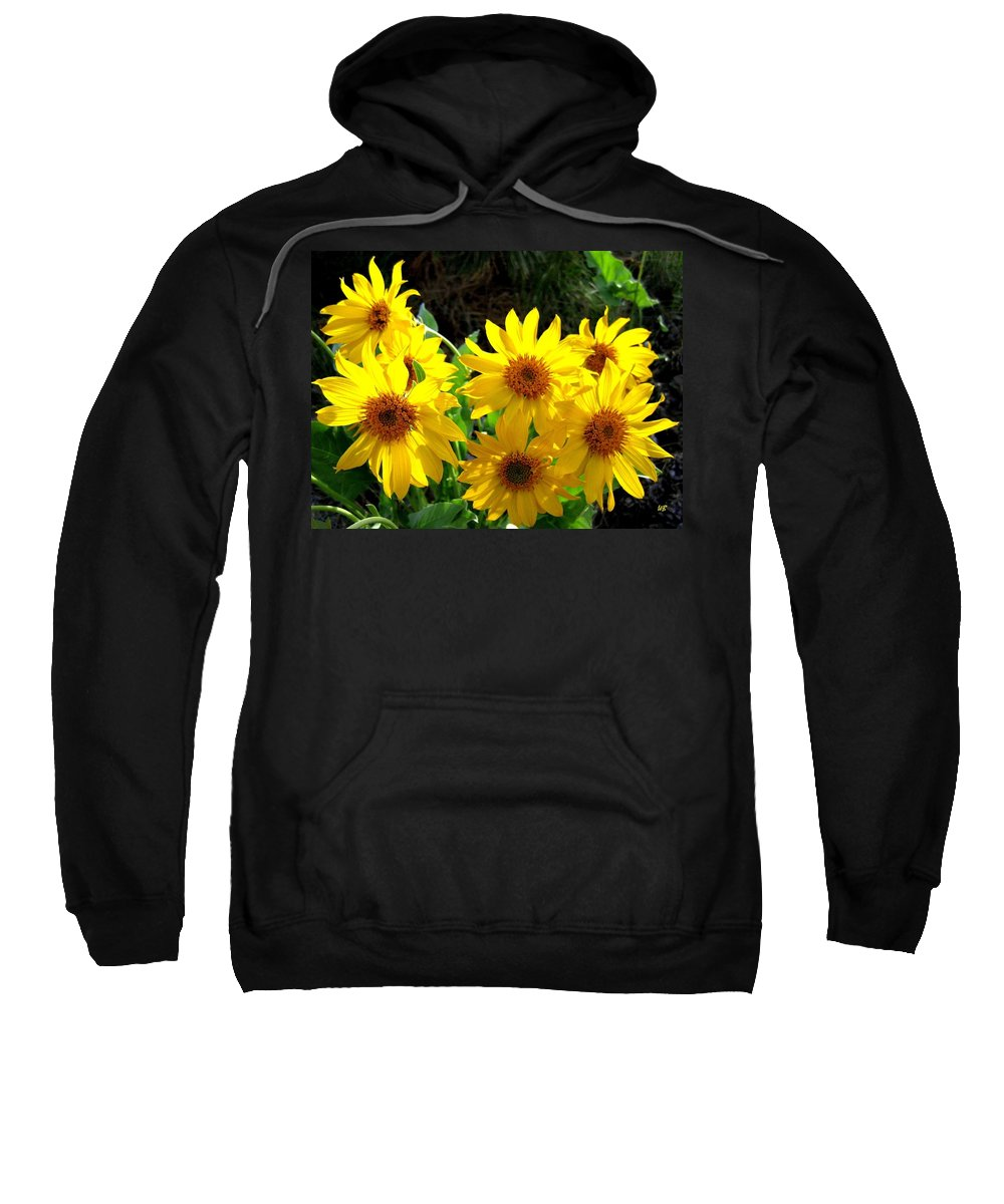 Wildflowers Sweatshirt featuring the photograph Sunlit Wild Sunflowers by Will Borden