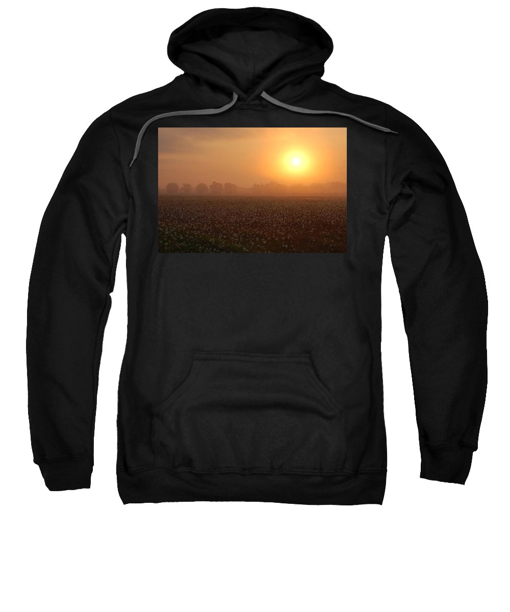 Mobile Sweatshirt featuring the digital art Sunrise And The Cotton Field by Michael Thomas