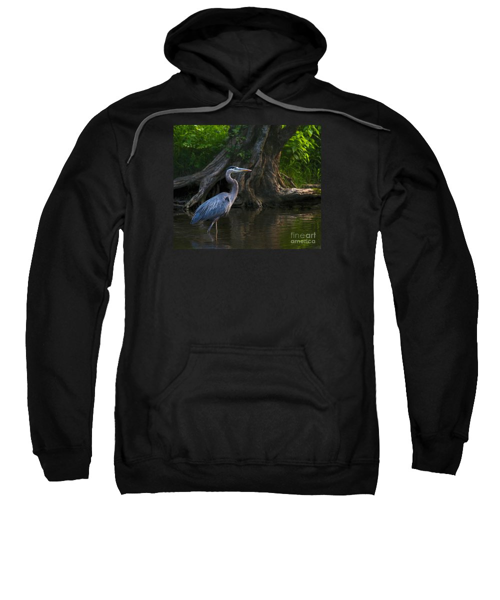 Heron Sweatshirt featuring the photograph Sunset Stroll By James Figielski by Paulinskill River Photography