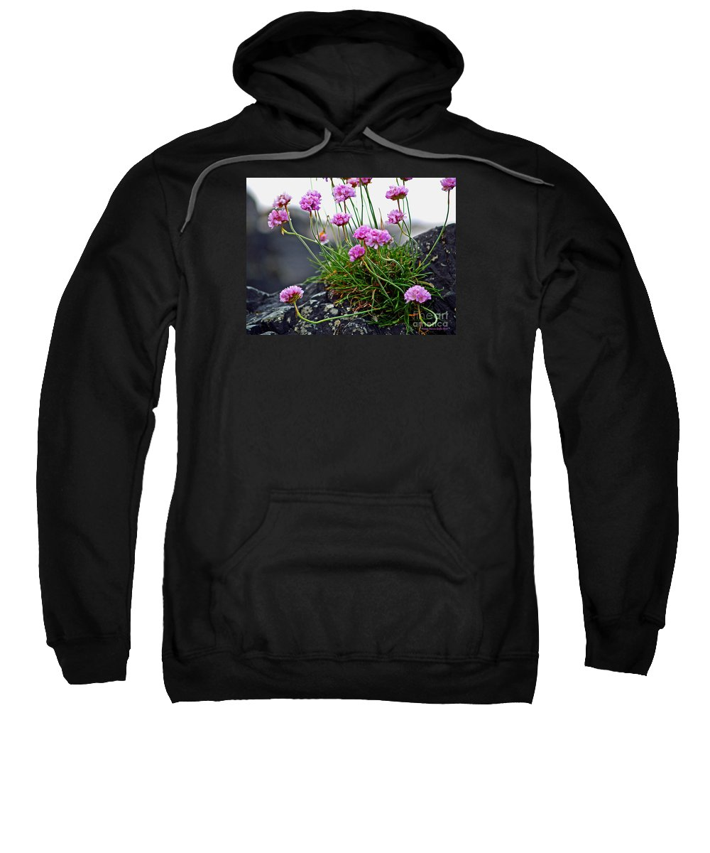 Fine Art Photography Sweatshirt featuring the photograph Survival Of The Fittest by Patricia Griffin Brett