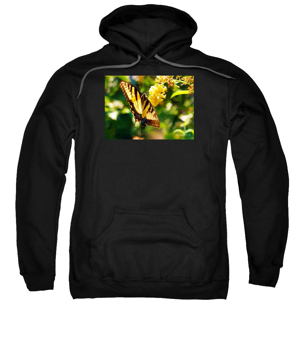 Butterfly Painting Sweatshirt featuring the painting Swallowtail by Patricia Griffin Brett