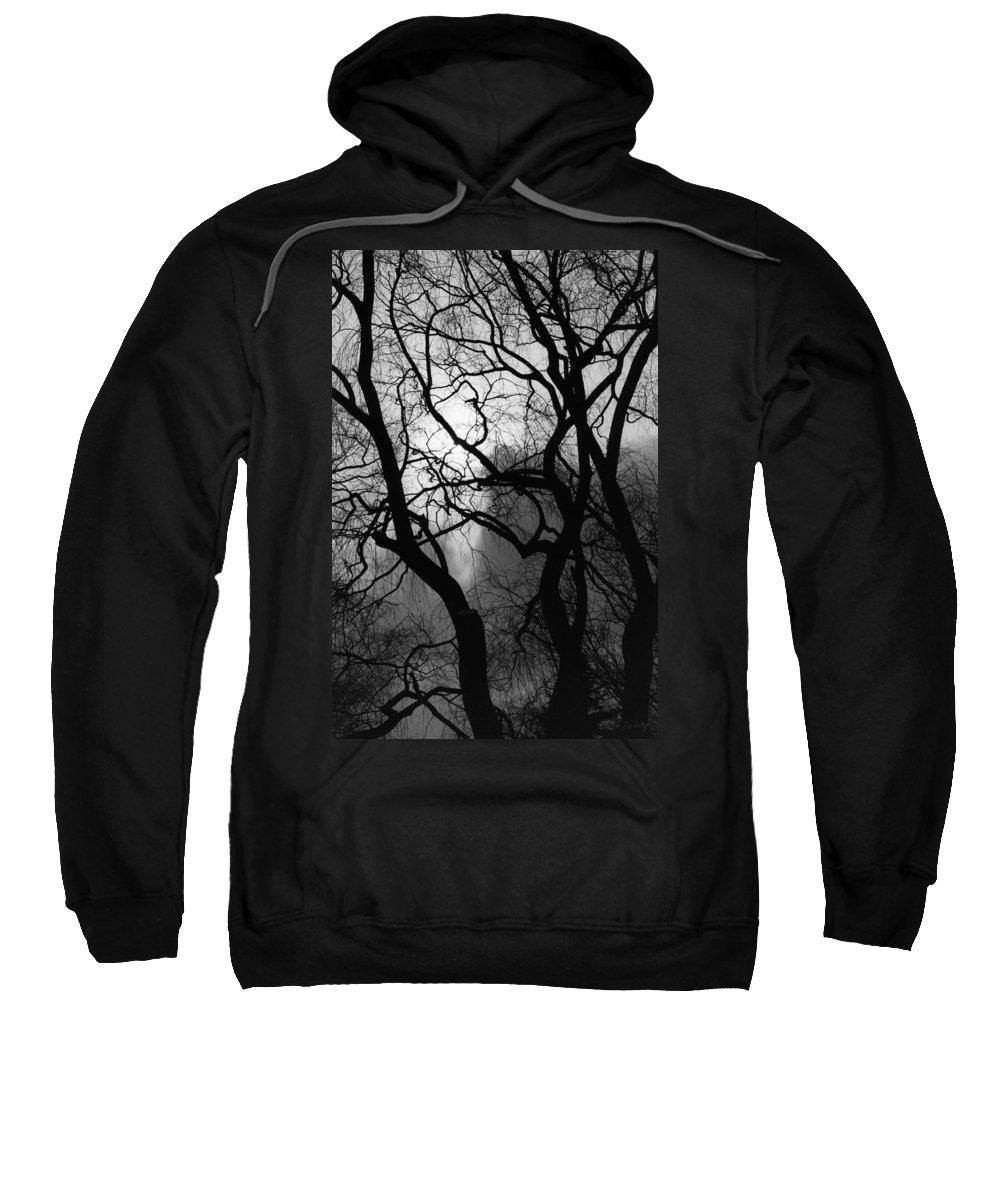 Tree Sweatshirt featuring the photograph Tangled Trees by Phill Doherty
