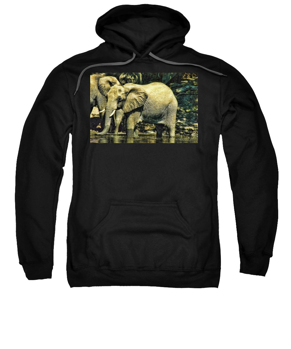 Elephants Sweatshirt featuring the photograph Tembo by Douglas Barnard