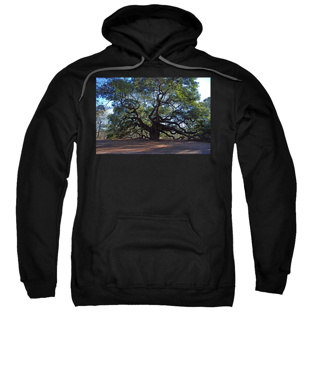 Photography Sweatshirt featuring the photograph The Angel Oak In Spring by Susanne Van Hulst