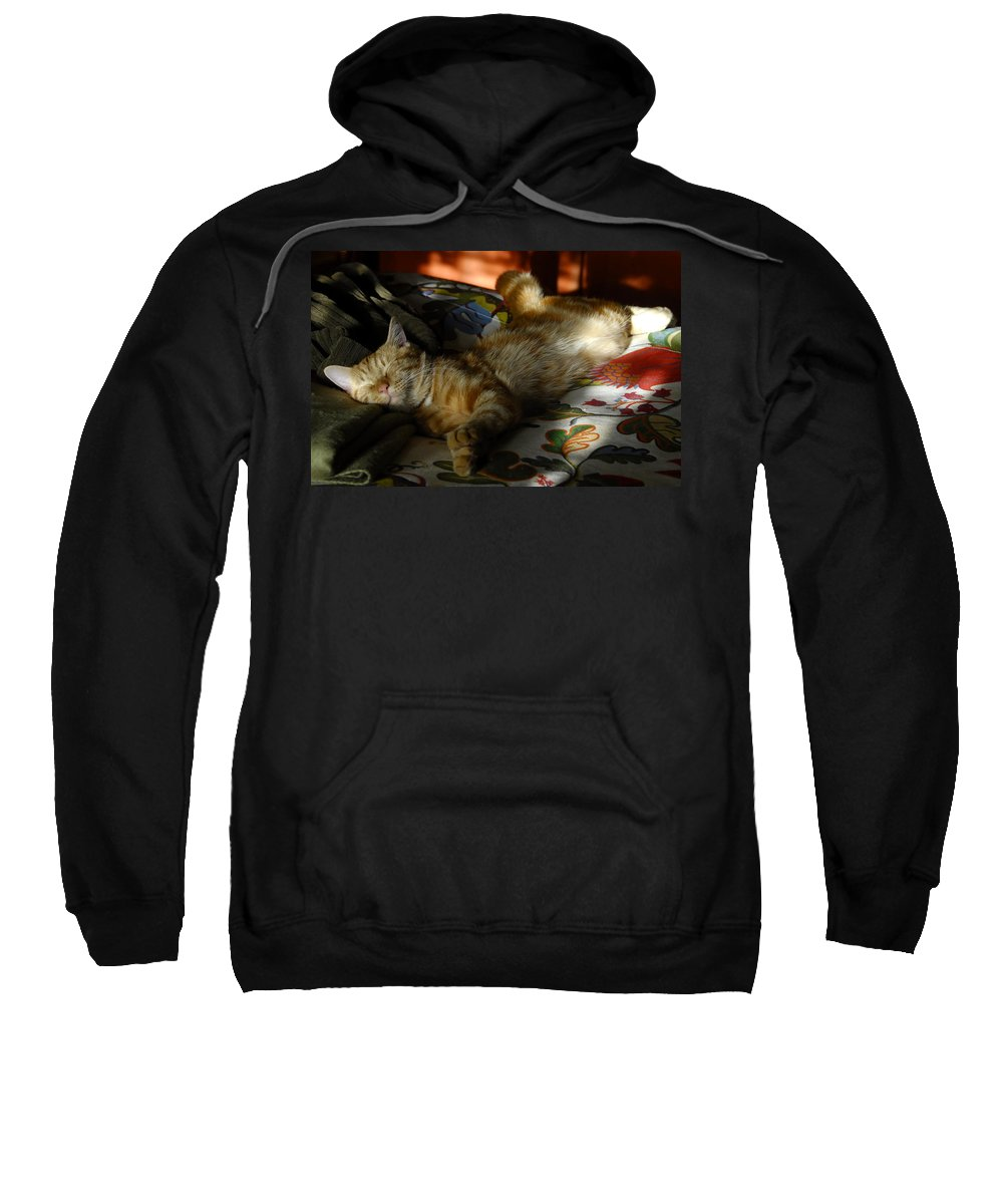 Fine Art Photography Sweatshirt featuring the photograph The Art Of Relaxation by David Lee Thompson