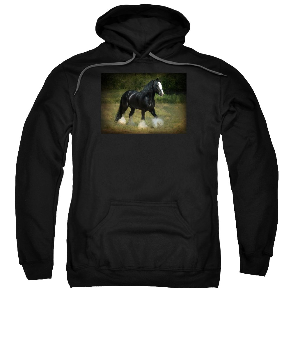 Horses Sweatshirt featuring the photograph The Boss C by Fran J Scott