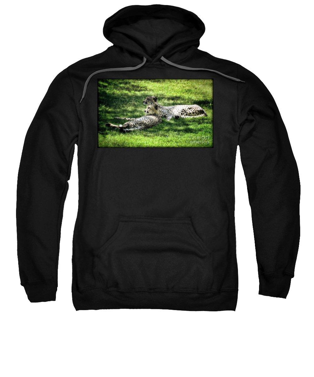 Cheetah Sweatshirt featuring the photograph The Cheetahs by Saija Lehtonen