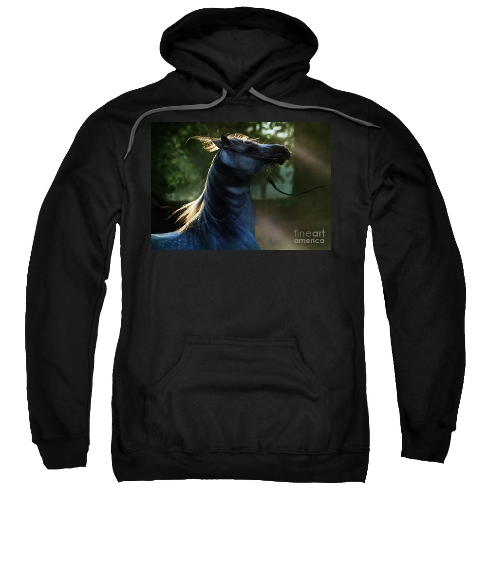 Sunset Sweatshirt featuring the photograph The Crazy Horse by Angel Ciesniarska