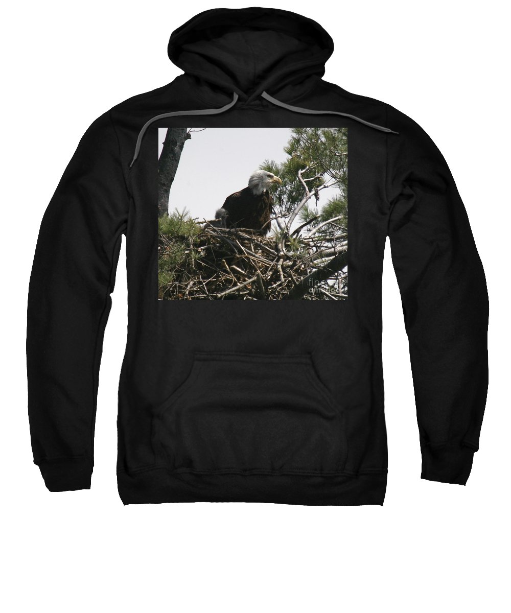 Eagle Sweatshirt featuring the photograph The Eagle Eye by Robert Pearson