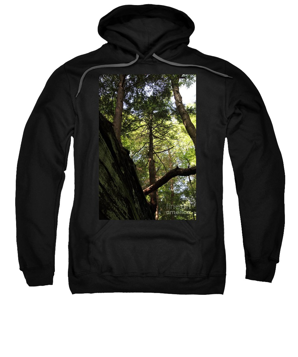 Tree Sweatshirt featuring the photograph The Fallen Triangle by Amanda Barcon
