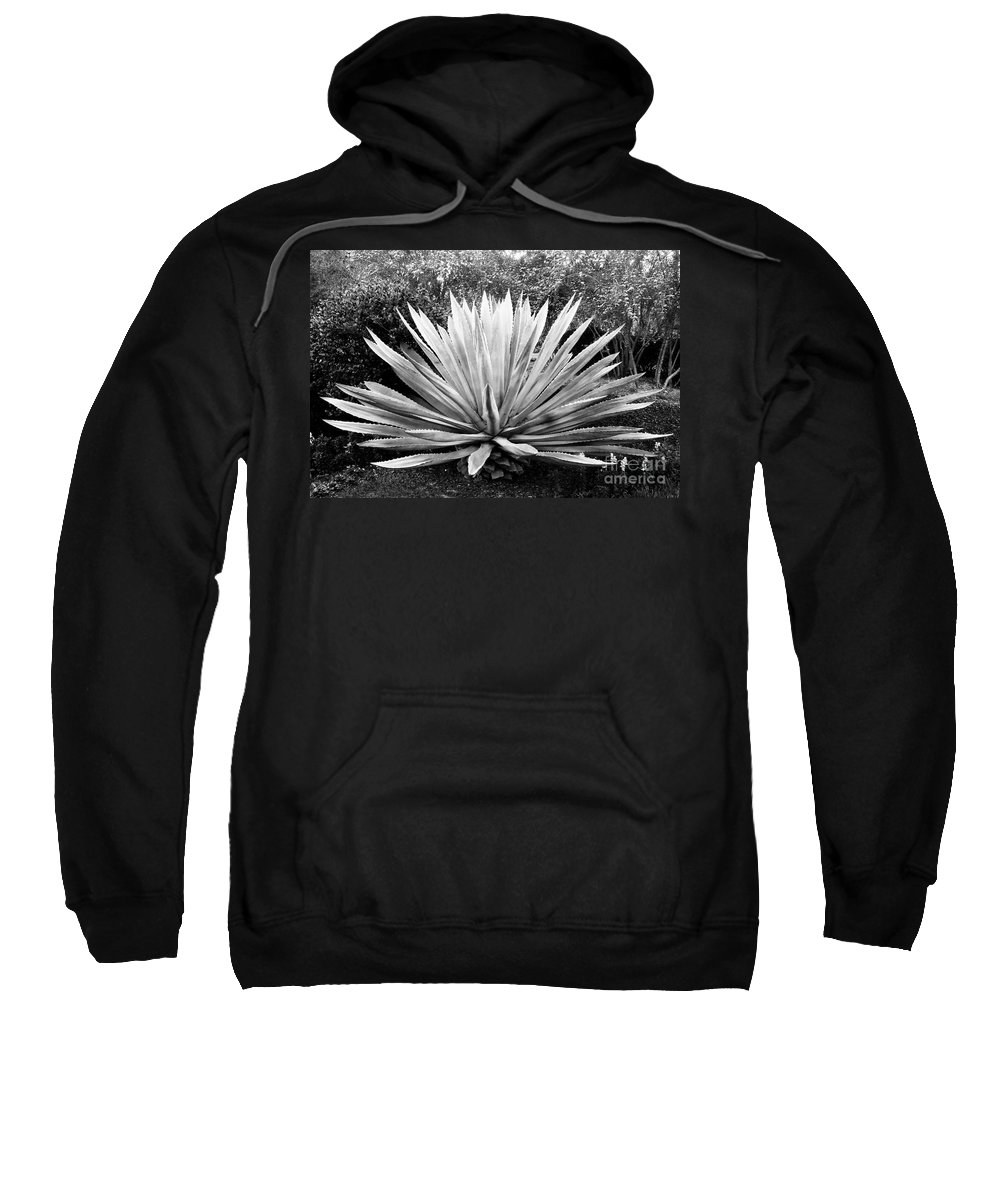 Agave Sweatshirt featuring the photograph The Great Agave by David Lee Thompson